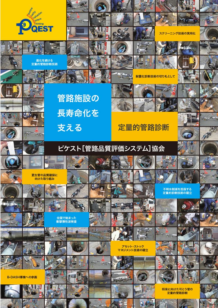 衝撃弾性波検査法 ピケストタログ
